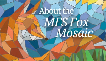 About-the-MFS-Fox-Mosaic
